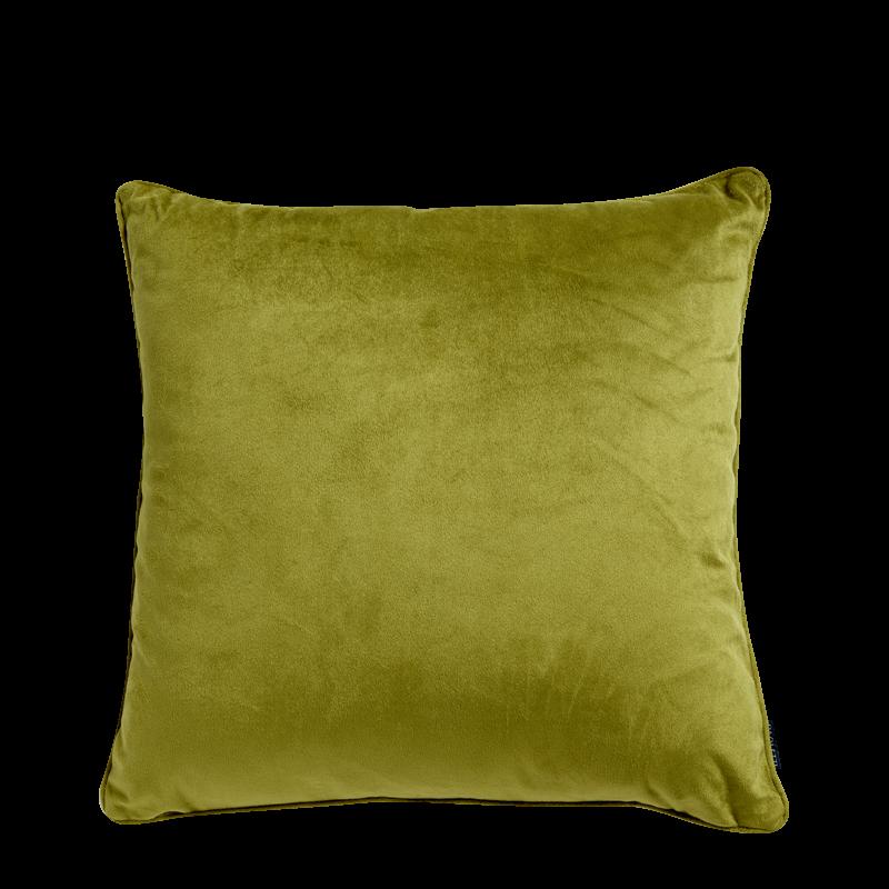 Green Velvet Cushion